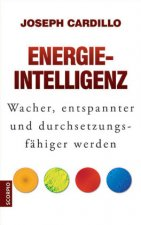 Energie-Intelligenz