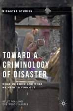 Toward a Criminology of Disaster