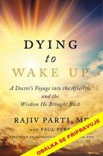 Po smrti se probudit
