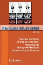 Practical Guidance on Peptide Receptor Radionuclide Therapy (PRRNT) in Neuroendocrine Tumours