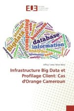Infrastructure Big Data et Profilage Client: Cas d'Orange Cameroun