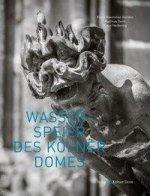 Wasserspeier des Kölner Domes