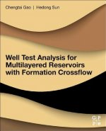 WELL TEST ANALYSIS FOR MULTILA