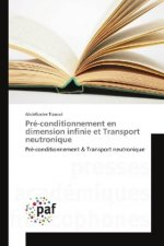 Pré-conditionnement en dimension infinie et Transport neutronique