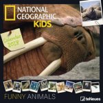 National Geographic Funny Animals 2018
