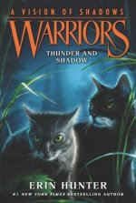 WARRIORS A VISION OF SHADOWS #