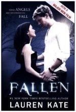 Fallen, Film Tie-In