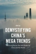 DEMYSTIFYING CHINAS MEGA TREND