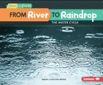 FROM RIVER TO RAINDROP FROM RI