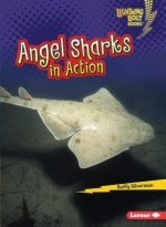 ANGEL SHARKS IN ACTION ANGEL S