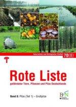 Rote Liste gefährdeter Tiere, Pflanzen und Pilze Deutschlands - Bd 8: Pilze (Teil 1) Großpilze