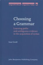 CHOOSING A GRAMMAR