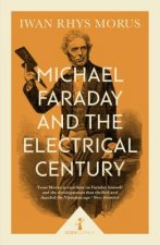 MICHAEL FARADAY & THE ELECTRIC