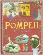 Pompeii Picture Book