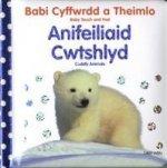Babi Cyffwrdd a Theimlo: Anifeiliaid Cwtshlyd/Baby Touch and Feel: Cuddly Animals