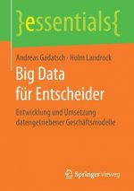 Big Data fur Entscheider