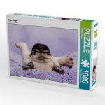 Mops Welpe (Puzzle)