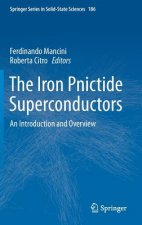 The Iron Pnictide Superconductors
