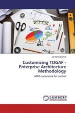 Customizing TOGAF - Enterprise Architecture Methodology