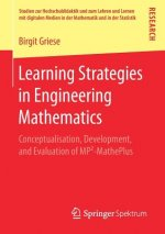 Learning Strategies in Engineering Mathematics