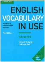 English Vocabulary in Use Advanced 3rd Edition, with answers