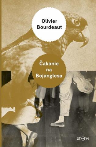 Čakanie na Bojanglesa