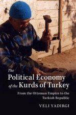 Political Economy of the Kurds of Turkey