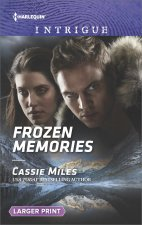 FROZEN MEMORIES -LP LP/E