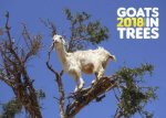 Goats in Trees 2018