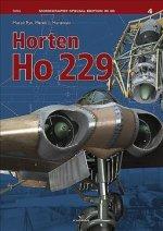 Horten Ho 229