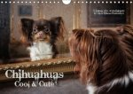 Chihuahuas - Cool & Cute / UK-Version 2018
