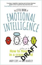 Little Book of Emotional Intelligence