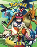 POKEMON X-Y VOL 11