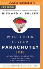 WHAT COLOR IS YOUR PARACHUTE M