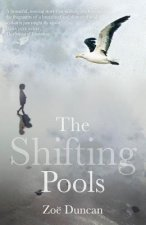 The Shifting Pools