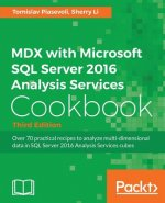 MDX with Microsoft SQL Server 2016 Analysis Services Cookbook - Third Edition