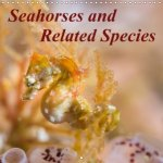 Seahorses and Related Species 2018