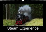 Steam Experience 2018