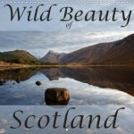 Wild Beauty of Scotland 2018