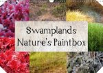 Swamplands Nature's Paintbox 2018