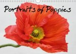 Portraits of Poppies 2018