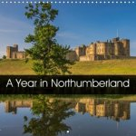 Year in Northumberland 2018