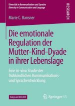 Die emotionale Regulation der Mutter-Kind-Dyade in ihrer Lebenslage