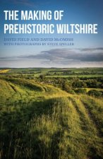 Making of Prehistoric Wiltshire