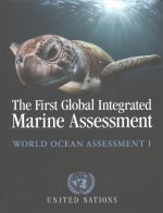 First Global Integrated Marine Assessment