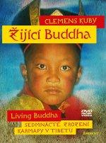 Žijící Buddha