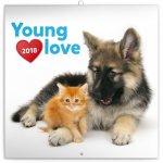 Kalendář poznámkový 2018 - Young Love – koťata & štěňata, 30 x 30 cm