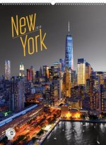 Kalendář nástěnný 2018 - New York – Jakub Kasl
