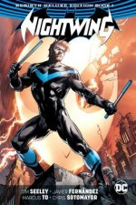 NIGHTWING THE REBIRTH DLX /E B