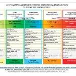 Autonomic Nervous System Table: Wall Poster